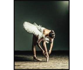 Ballerina II plakat m. egetræsramme