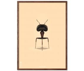 Brainchild Myren i ramme